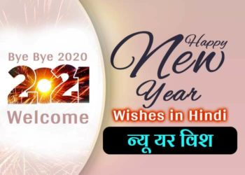 Happy New Year Wishes in Hindi